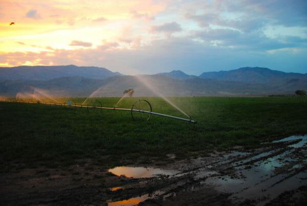 irrigate2016